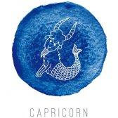 Capricórnio vida 2015 amor: o que o seu signo do zodíaco dizer sobre sua vida amorosa no próximo ano?