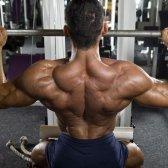Como obter grandes lats: 5 melhores exercies você deve tomar