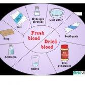 Recado Obter sangue em suas roupas