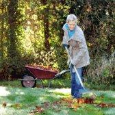 Como winterize seu jardim