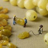 série imaginativa de dioramas capturar pessoas pequenas entre os grandes alimentos