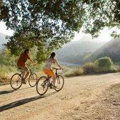 Novo mercado on-line torna incómodo bicicleta férias