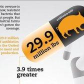 recorde de vendas de antibióticos para a produção de carne e aves de capoeira [infográfico]