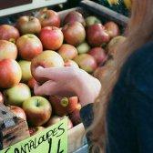 sala de estudo: fazer seus impostos é mais fácil do que fazer escolhas alimentares saudáveis?