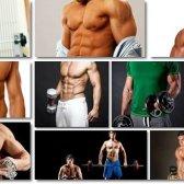 Spartan corpo vista programa pdf - é o guia tom útil?