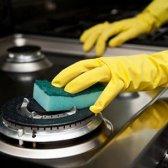 Os 10 problemas mais irritante de limpeza: resolvido