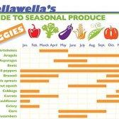 O que está em temporada? Hora de comprar 62 Frutos e legumes [infográfico]