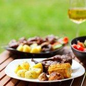 O seu guia go-to para as melhores combinações de vinhos e churrasqueira