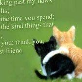 Carta ao seu melhor amigo