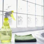 Limpeza Alternativas SURS e ambientalmente.